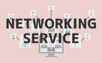 ネットワーキングサービス事業